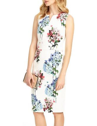 Hydrangea Print Dress