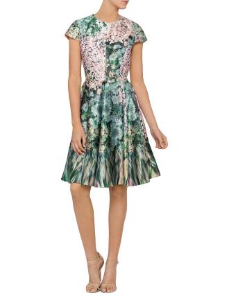 Dixee Cap Slv Full Skirt Dress