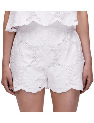 Sunflower Lace Scallop Hem Shorts