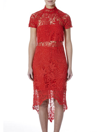 Bed Of Roses Lace Dress