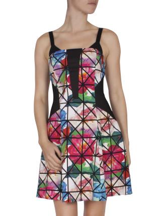 Caged Peony Sleeveless Skater Dress