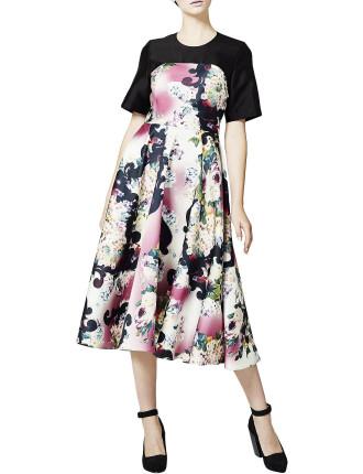 Candy Warhol Dress