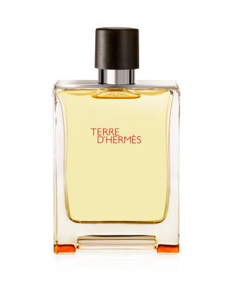 Terre D'Hermès Eau de Toilette Spray 100ml