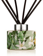 Michael Angove Orange Blossom Scent Surround¿ Diffuser 165ml $120.00