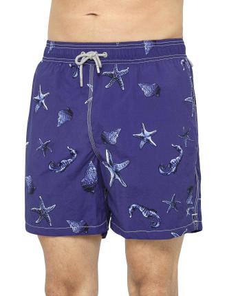 Starfish Volley
