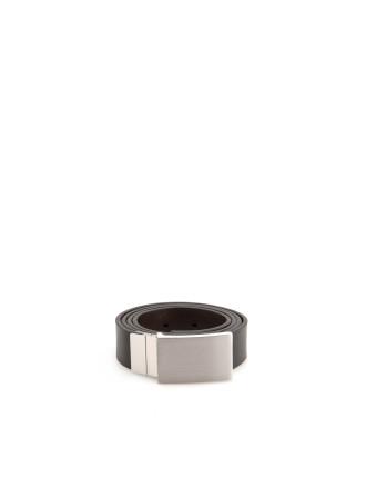 Reversible Plaque Belt