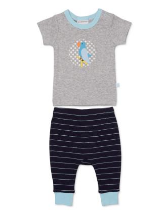 T-Shirt And Footless Pant