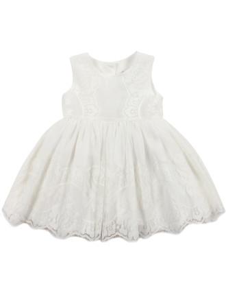 Bebe Lace Hem Dress