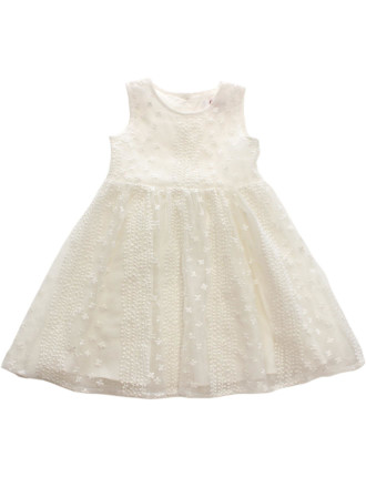 Embroidered Organza Dress