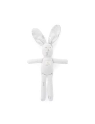 Spot Bunny