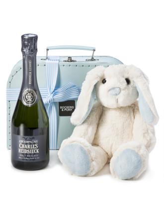 Baby Boy Bunny + Bubbles