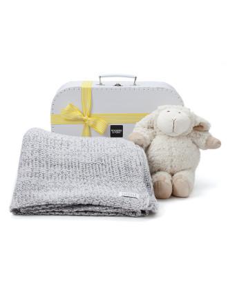 Merino Lamb Baby Surprise