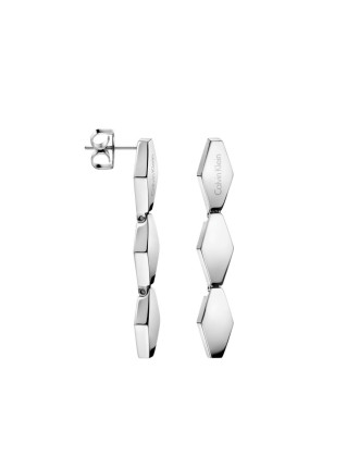Snake Polished Stainless Steel Earrings