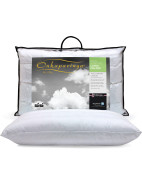 Latex Pillow $99.95
