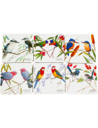 Birds of Australia Eric Shepard Coasters Set 6 10.5cm $9.95