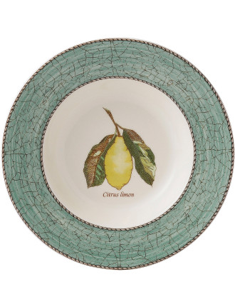 Sarah's Garden Soup Plate Green 23cm