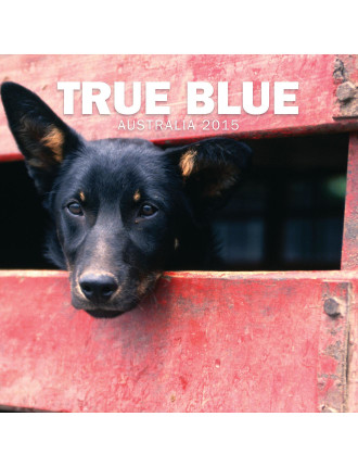 True Blue Australia 2015 Square Wall Calendar