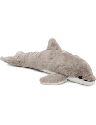 Baby Dolphin