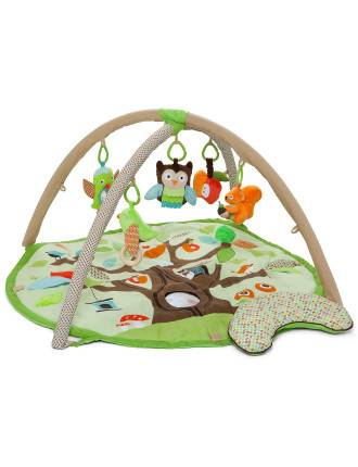 Treetop Friends Activity Gym