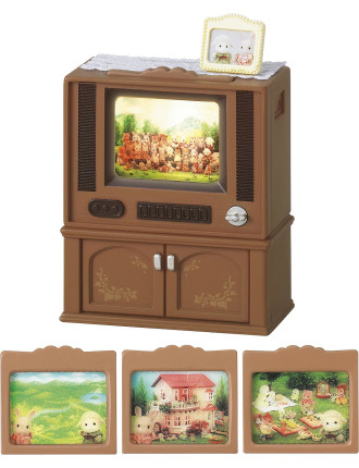 Deluxe Television Set