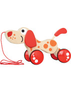 Walk A Long Puppy $39.95