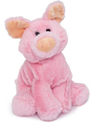 Susi the Pig