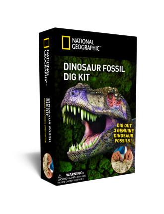 Dinosaur Dig Fossel Kit