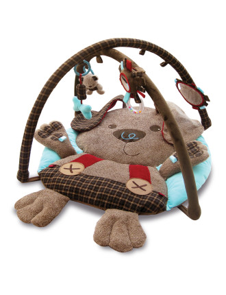 Percy Pup Multi-Activity Playgym
