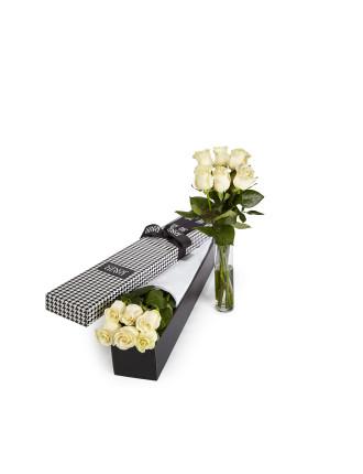 6 White Premium Long Stem Roses