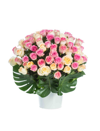Pastel Love (60 Stems)