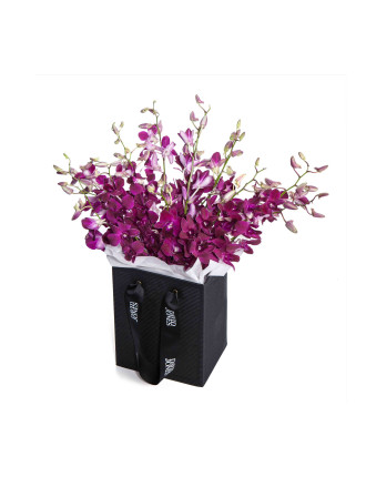 Royal Orchids (15 Stems)