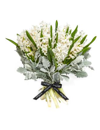 Simply Hyacinths